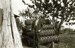 Wim van Eck de mandenmaker in 1956